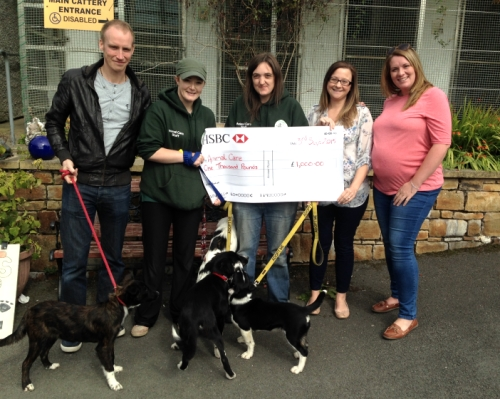 Animal-Care-Donation