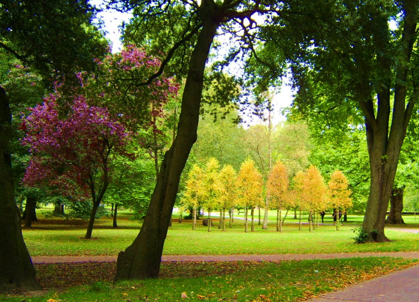 Cardiff with Kids - Bute Park