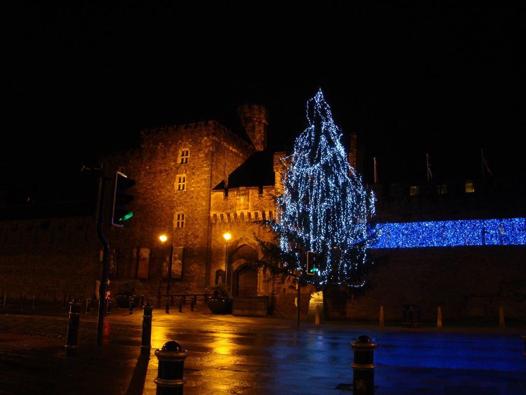 Cardiff Christmas Tree with fairy lights.