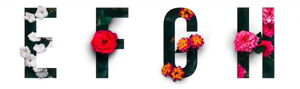 E to H alphabet serviced