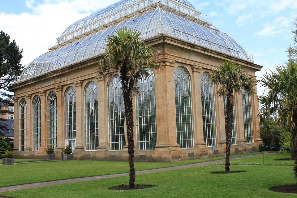 Edinburgh palm house
