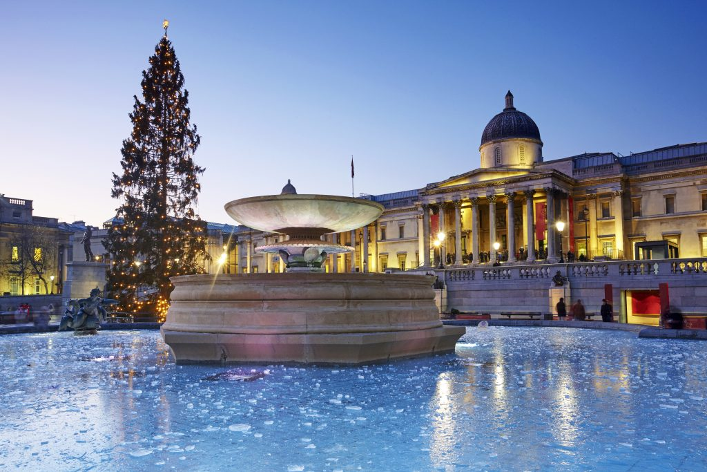 A Christmas tree in Trafalgar square