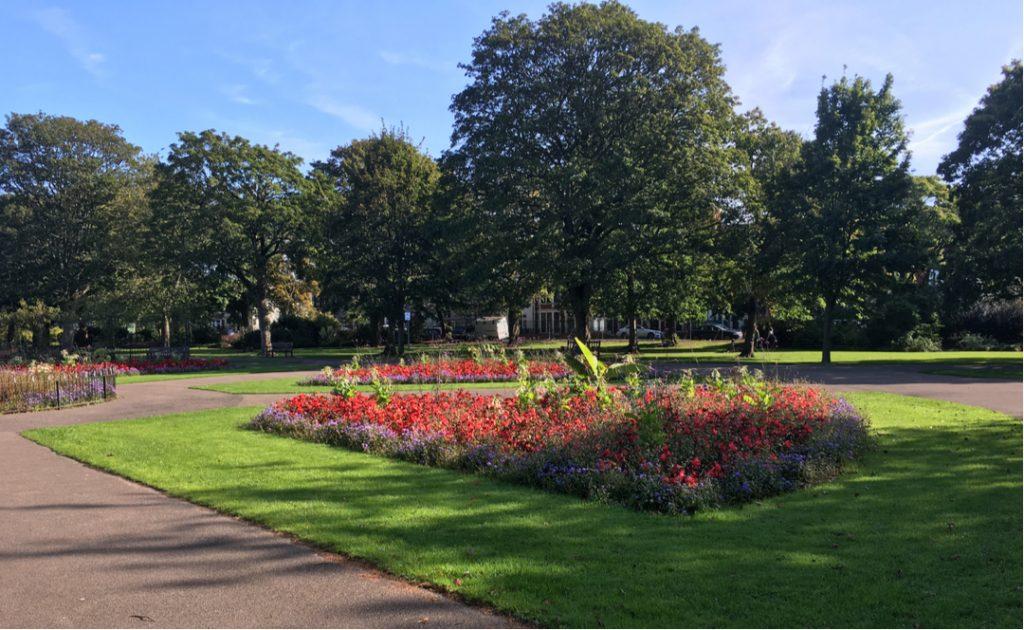 Victoria Park Cardiff flowers