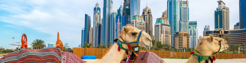 UAE  Serviced Apartments