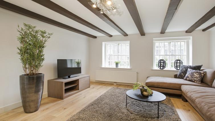 TV at the Zwaansteeg Canal Garden Apartments - Citybase Apartments