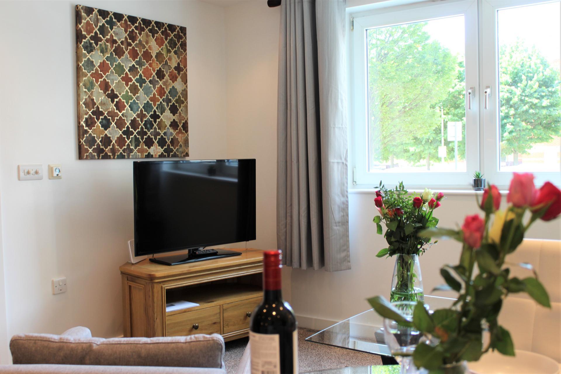 TV at Gunwharf Quays Apartments, Gunwharf Quays, Portsmouth - Citybase Apartments