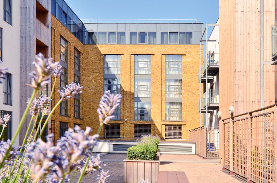 Flowers at So Battersea Apartments, Battersea, London - Citybase Apartments
