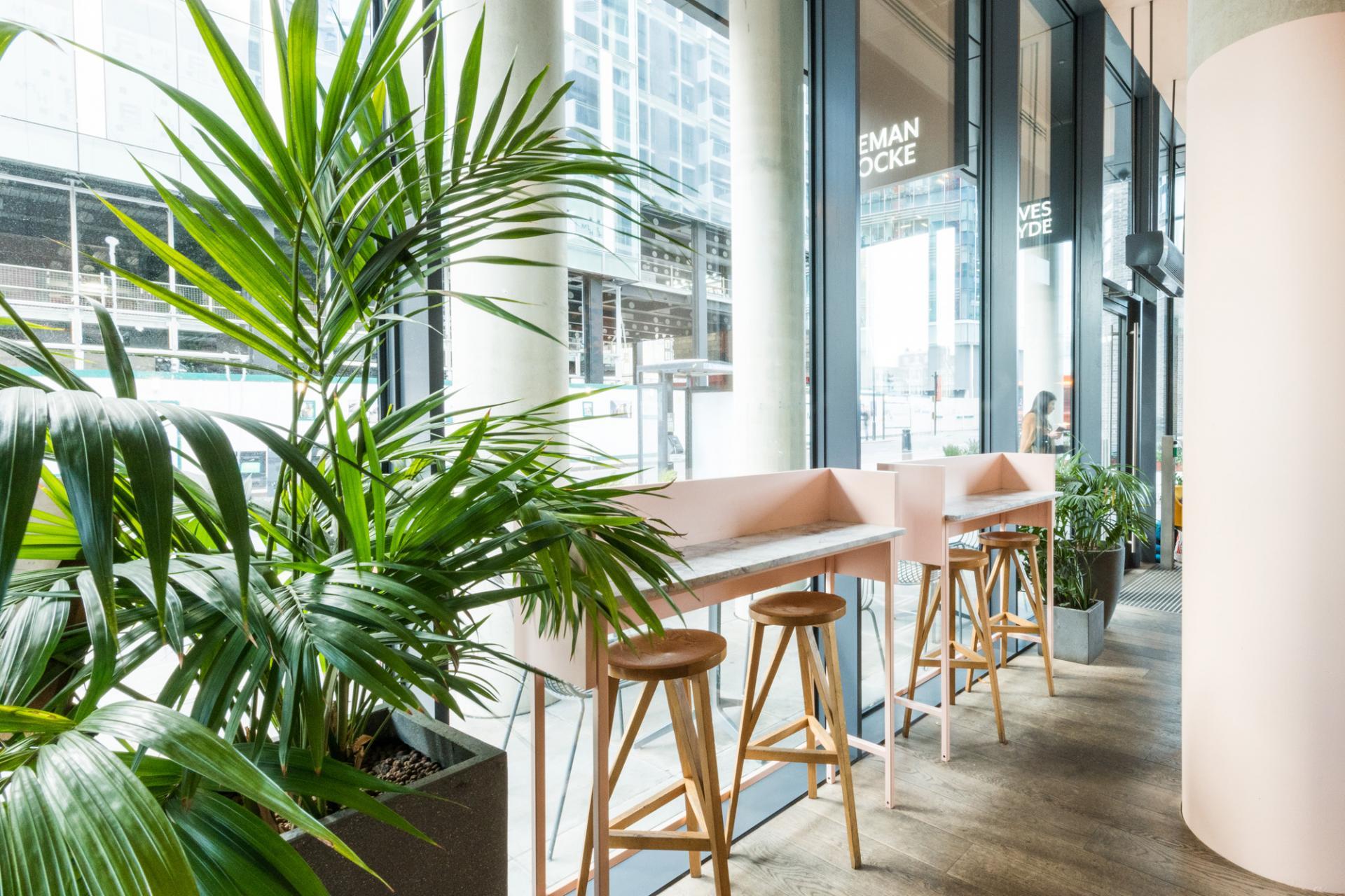 Plants at Leman Locke - Aldgate, Aldgate, London - Citybase Apartments