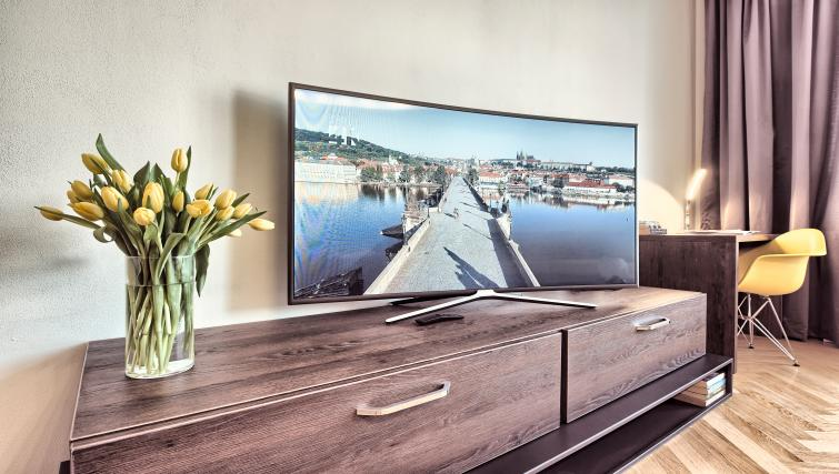 TV at Milosrdnych Apartments - Citybase Apartments